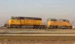 UP 3115  and 9890